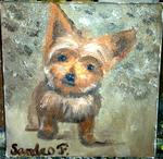 Falletta Sandro - DOG GINETTE 1