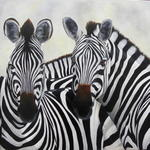 Chantal Rousselet - Zebras