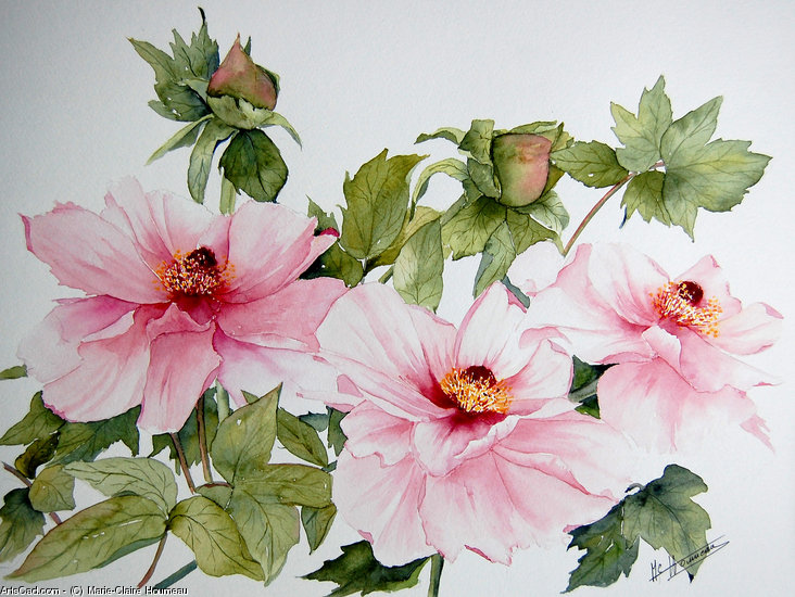 Opere D'arte >> Marie-Claire Houmeau >> Peonie Ueno In giappone