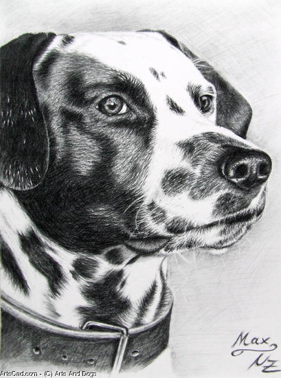 Opere D'arte >> Arts And Dogs >> Dalmata Massimo
