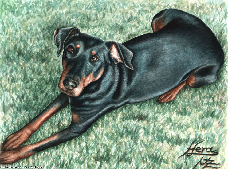 Opere D'arte >> Arts And Dogs >> Dobermann