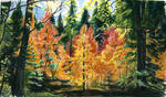 Ian Winslow Rees - Mt Lemmon Autunno